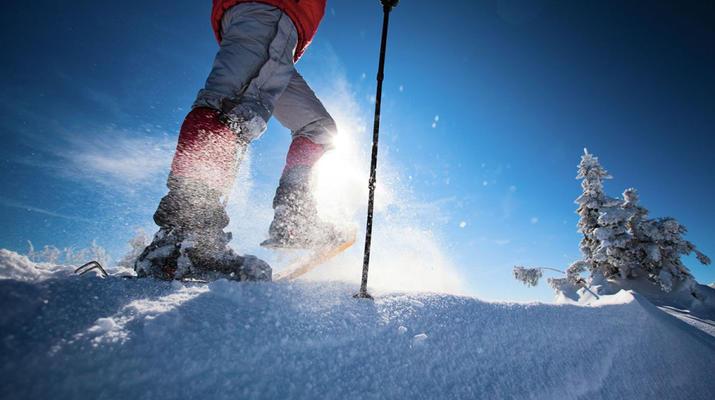 Snowshoeing-Andorra-Snowshoeing excursions in Ordino, Andorra-4