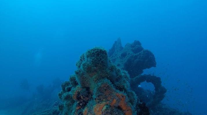 Scuba Diving-Durban-Reef and wreck scuba diving excursions on the Umkomaas coast, near Durban-2
