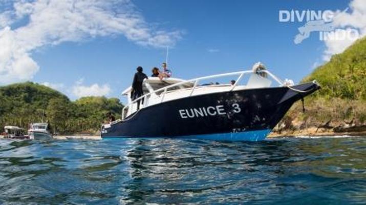 Snorkeling-Sanur-Excursions de plongée en apnée au départ de Sanur, Bali-3