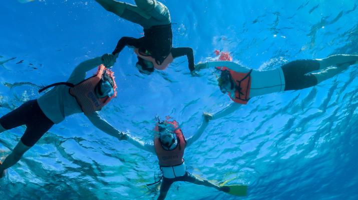 Snorkeling-Tahiti-Snorkeling et Observation des Baleines et Dauphins à Tahiti-1