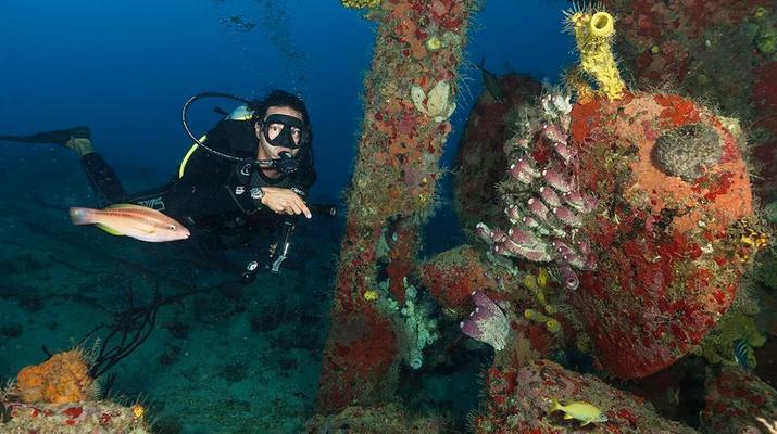 Scuba Diving-Bayahibe-PADI Scuba diving course in Bayahibe, Dominican Republic-4