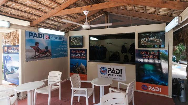 Scuba Diving-Bayahibe-PADI Scuba diving course in Bayahibe, Dominican Republic-6