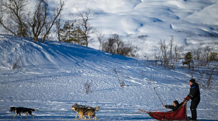 Dog sledding-Tromsø-6D/5N Arctic dog sledding expedition in Tromsø-4