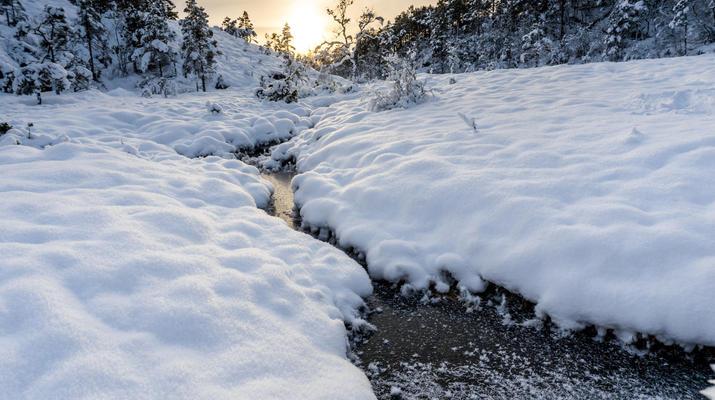 Snowshoeing-Stavanger-Winter/Spring Hike to Preikestolen (Pulpit Rock) in Ryfylke-2