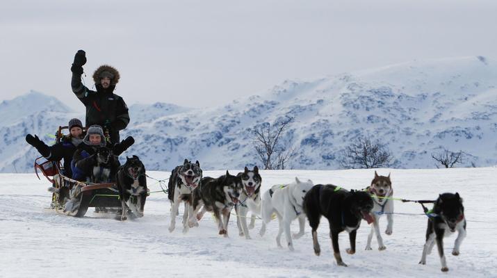 Dog sledding-Tromsø-2 day Arctic dog sledding expedition in Tromsø-5