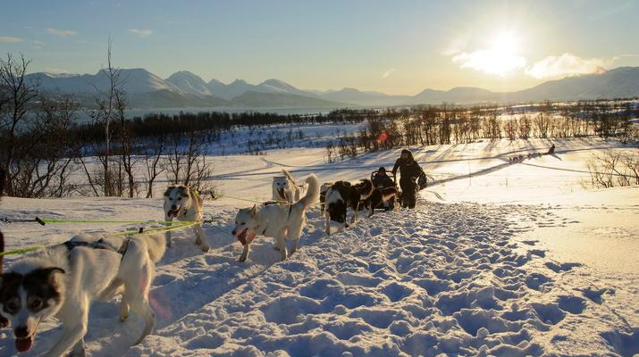 Dog sledding-Tromsø-6D/5N Arctic dog sledding expedition in Tromsø-1
