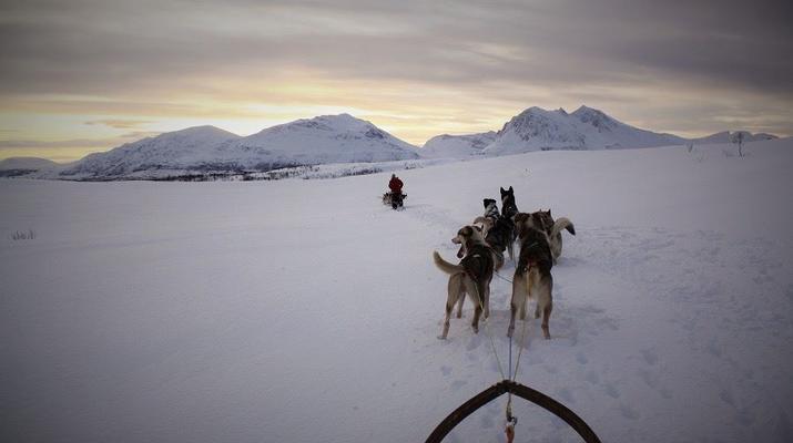 Dog sledding-Tromsø-2 day Arctic dog sledding expedition in Tromsø-6
