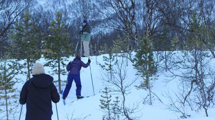 Cross-country skiing-Tromsø-Cross-country skiing excursion in Tromsø-3