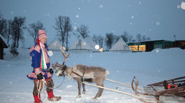 Reindeer sledding-Tromsø-Reindeer sledding day trip in Tromsø-5