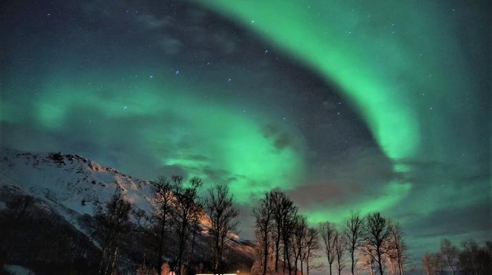 Reindeer sledding-Tromsø-Northern Lights Reindeer sledding trip near Tromsø-1