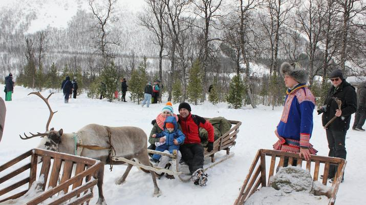 Reindeer sledding-Tromsø-Reindeer sledding day trip in Tromsø-3