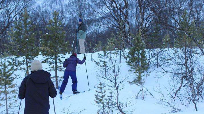 Cross-country skiing-Tromsø-Cross-country skiing excursion in Tromsø-1