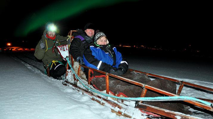 Dog sledding-Tromsø-Arctic evening dog sledding excursion in Tromsø-4
