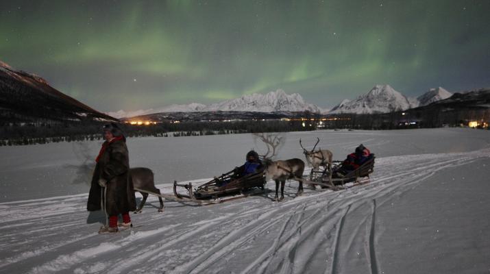 Reindeer sledding-Tromsø-Northern Lights Reindeer sledding trip near Tromsø-2