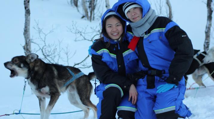 Dog sledding-Tromsø-Dog sledding day excursion in Tromsø-4