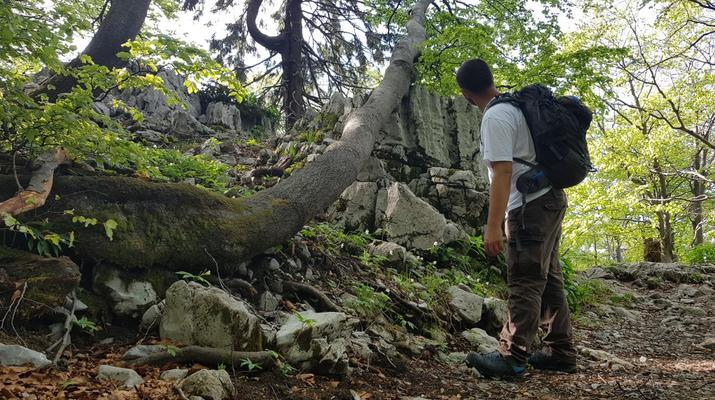 Randonnée / Trekking-Risnjak National Park-Excursion pédestre guidée dans le parc national de Risnjak-5