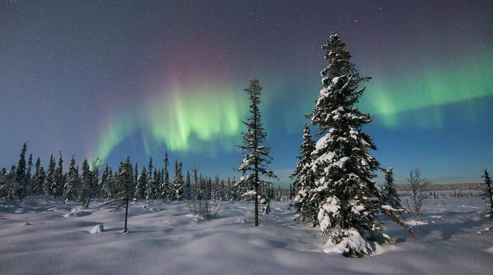 Raquette à Neige-Kiruna-Excursions en raquettes à Kiruna-1
