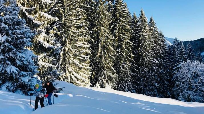 Schneeschuhwandern-Immenstadt-Schneeschuhwandern in den Allgäuer Alpen-6