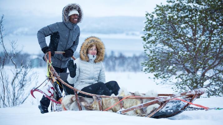 Dog sledding-Tromsø-Self-drive Arctic dog sledding excursion in Tromsø-6