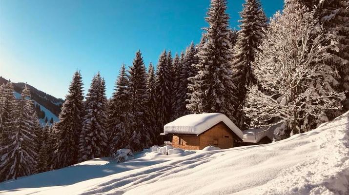 Schneeschuhwandern-Immenstadt-Schneeschuhwandern in den Allgäuer Alpen-7