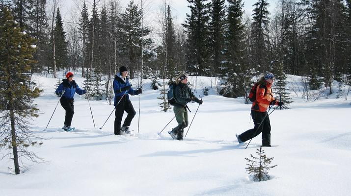 Raquette à Neige-Kiruna-Excursions en raquettes à Kiruna-5