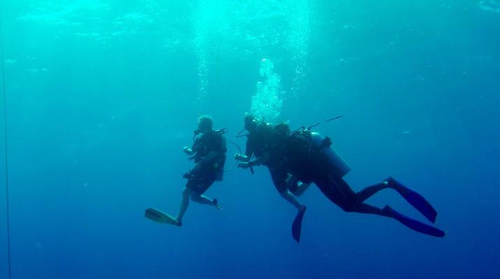 Plongée sous-marine-Saint-François-Stage de Plongée FFESSM Niveau 1 à Saint François-1
