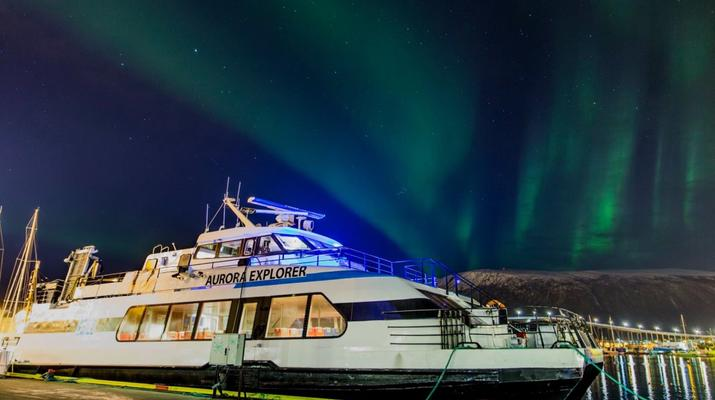 Wildlife Experiences-Tromsø-Whale Watching Safari & Fjord Cruise from Tromso-6
