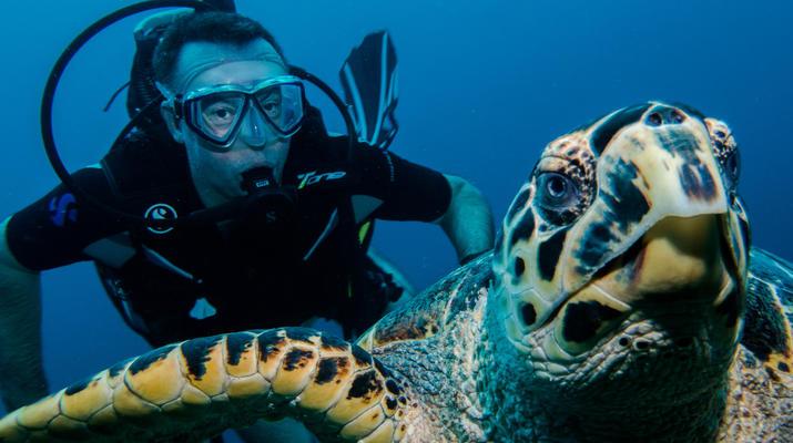 Plongée sous-marine-Saint-François-Bi-Plongées Exploration à Saint-François, Guadeloupe-1