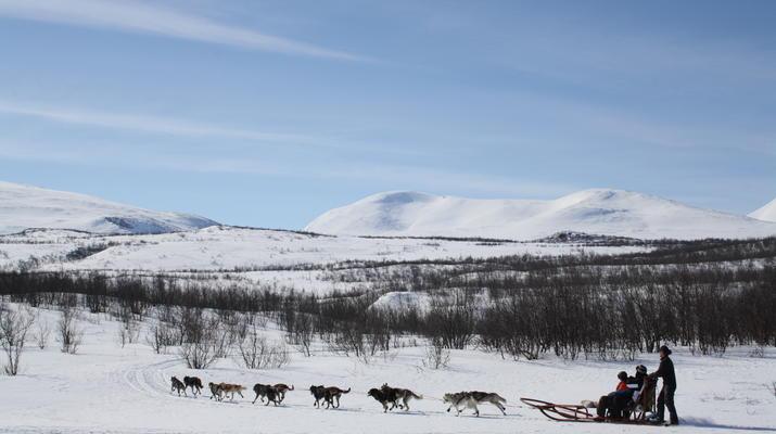 Hundeschlittenfahren-Abisko-Abenteuer Hundeschlittenfahrt am Polarkreis-2