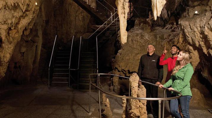 Caving-Waitomo-Glowworm Cave tour in the Waitomo Caves-5