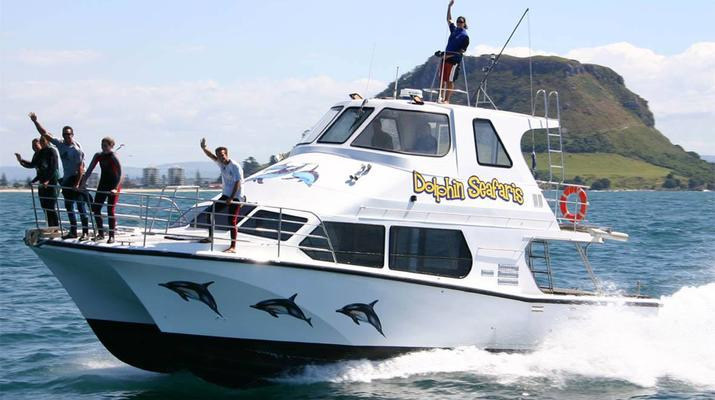 Wildlife Experiences-Tauranga-Swimming with dolphins in the Bay of Plenty-2