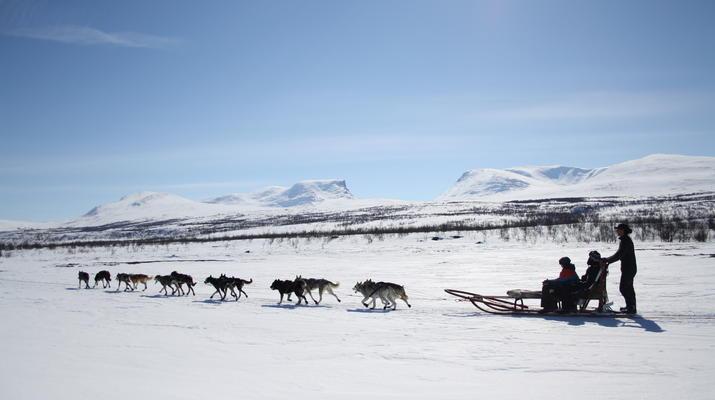 Hundeschlittenfahren-Abisko-Abenteuer Hundeschlittenfahrt am Polarkreis-3