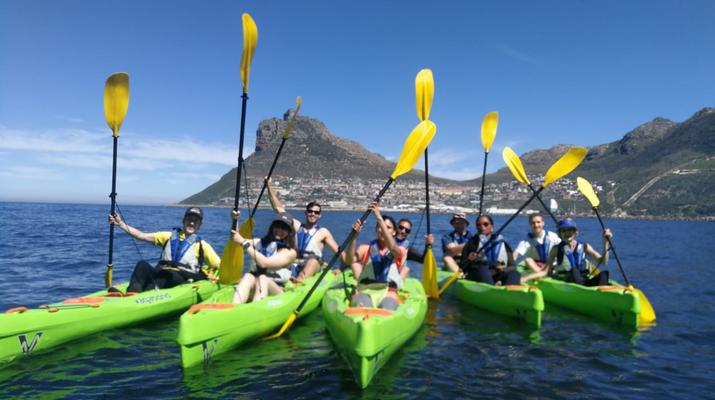 Sea Kayaking-Cape Town-Guided Sea Kayaking Tour in Hout Bay-4