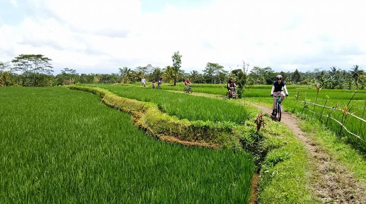Mountain bike-Bali-Multi-Day MTB Bali Tour-5