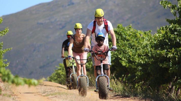 Trottinette-Stellenbosch-Excursion en scooter dans la réserve naturelle de Jonkershoek-2