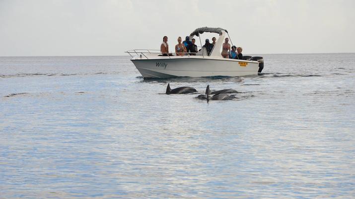 Snorkeling-Chutes de Tamarin - Gorges de Rivière Noire-Nager avec les Dauphins sur la Côte Ouest de Maurice-6