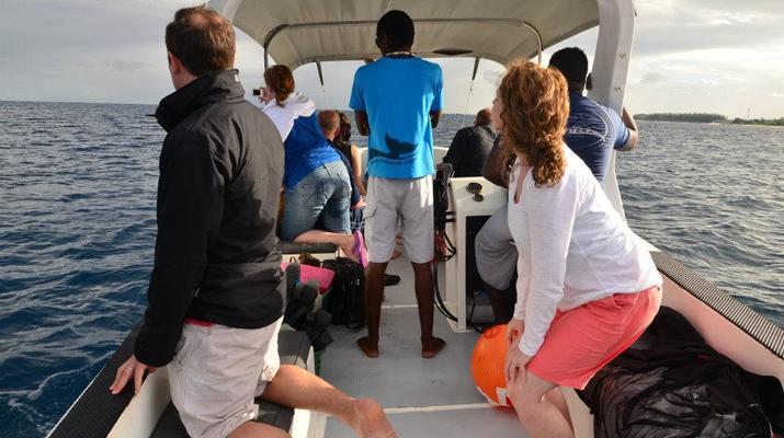 Snorkeling-Chutes de Tamarin - Gorges de Rivière Noire-Nager avec les Dauphins sur la Côte Ouest de Maurice-4