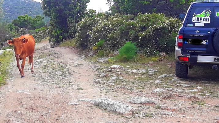 4x4-Balagne-Circuit 4x4 Off Road depuis L'Île-Rousse, Corse-9