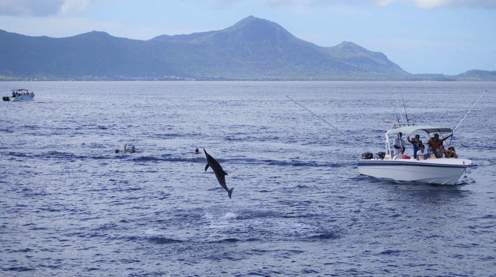 Snorkeling-Chutes de Tamarin - Gorges de Rivière Noire-Nager avec les Dauphins sur la Côte Ouest de Maurice-3