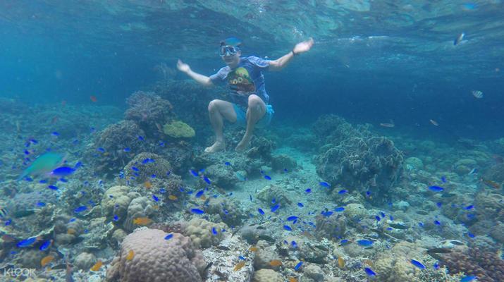 Canyoning-Cebu-Kawasan Falls & Moalboal Island Private Tour Package-2