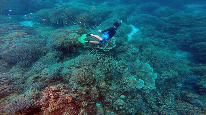 Canyoning-Cebu-Kawasan Falls & Moalboal Island Private Tour Package-11