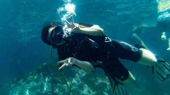Scuba Diving-Catania-Try Scuba Diving in Cyclops Islands Marine Protected Area near Catania-2
