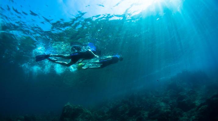 Snorkeling-Nice-Excursion snorkeling à Nice-6