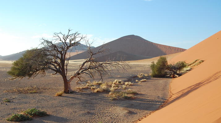 Safari-Windhoek-Excursión de 3 días a Sossusvlei en el desierto de Namibia-6