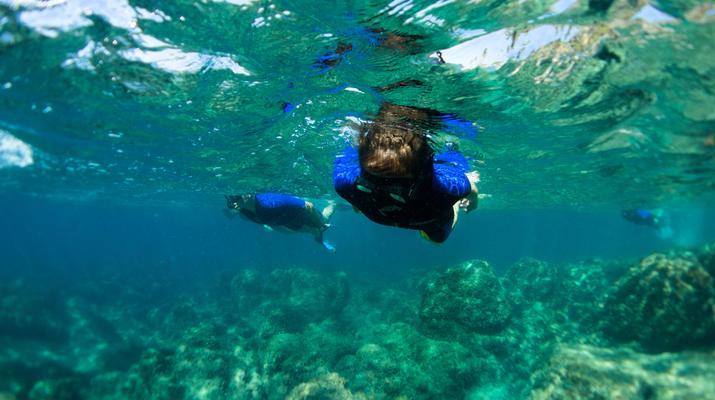 Snorkeling-Nice-Excursion snorkeling à Nice-5