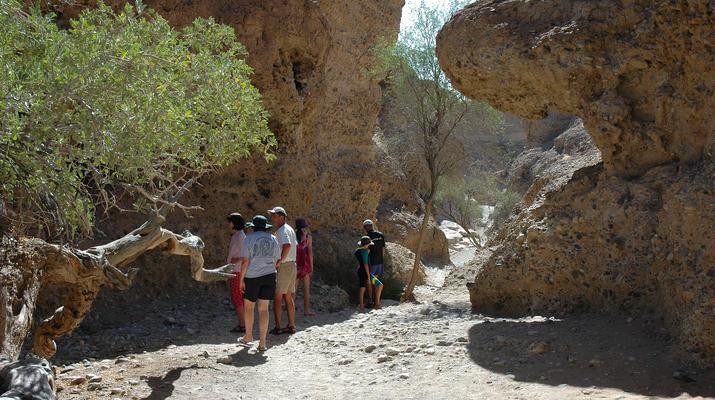 Safari-Windhoek-Excursión de 3 días a Sossusvlei en el desierto de Namibia-1