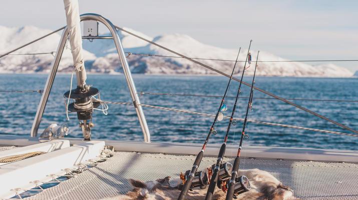 Sailing-Tromsø-Arctic sailing safari in Tromsø-1