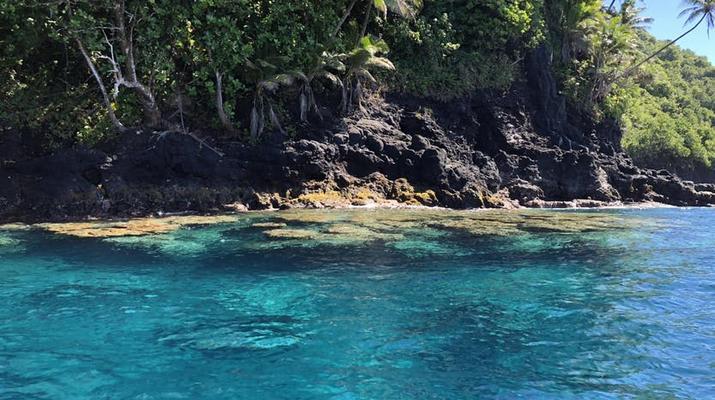 Wildlife Experiences-Tahiti-Tahiti Iti and Teahupoo boat excursion-4