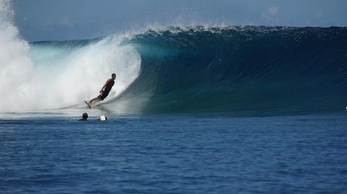 Wildlife Experiences-Tahiti-Tahiti Iti and Teahupoo boat excursion-5