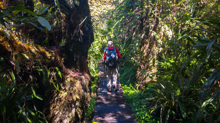 Randonnée / Trekking-Cirque de Salazie, Hell-Bourg-Randonnée Bélouve et Le Trou de Fer, Réunion-3